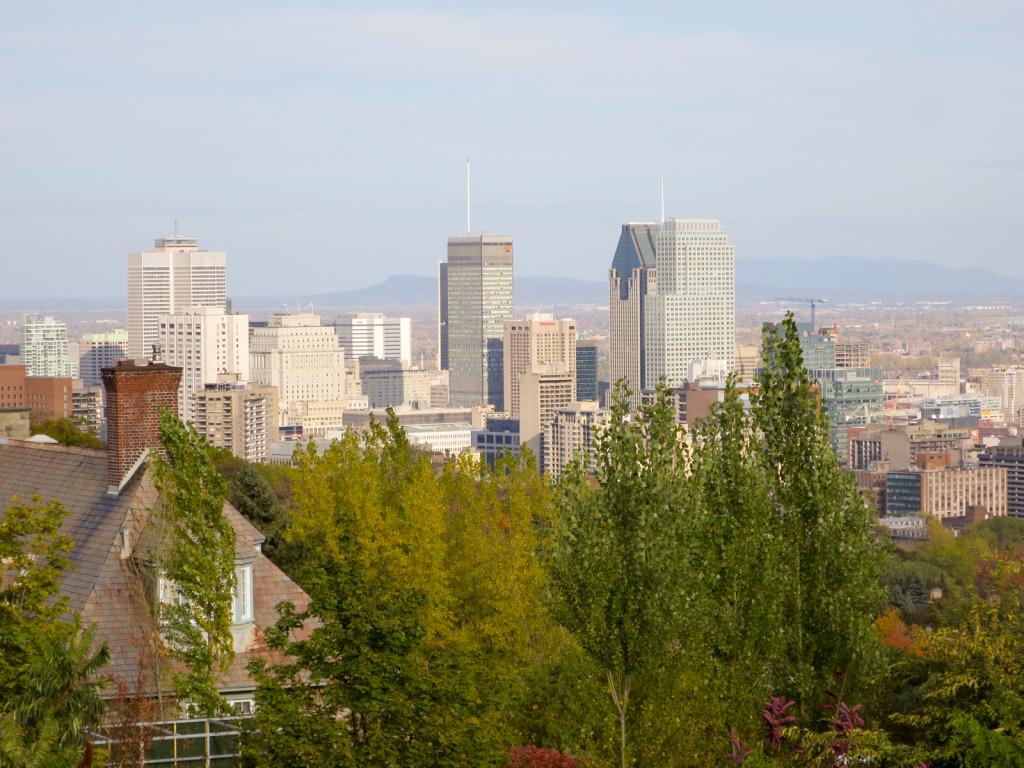Mont Royal (1 of 1)-2
