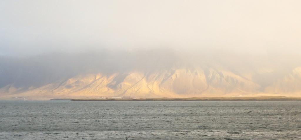 mäed8